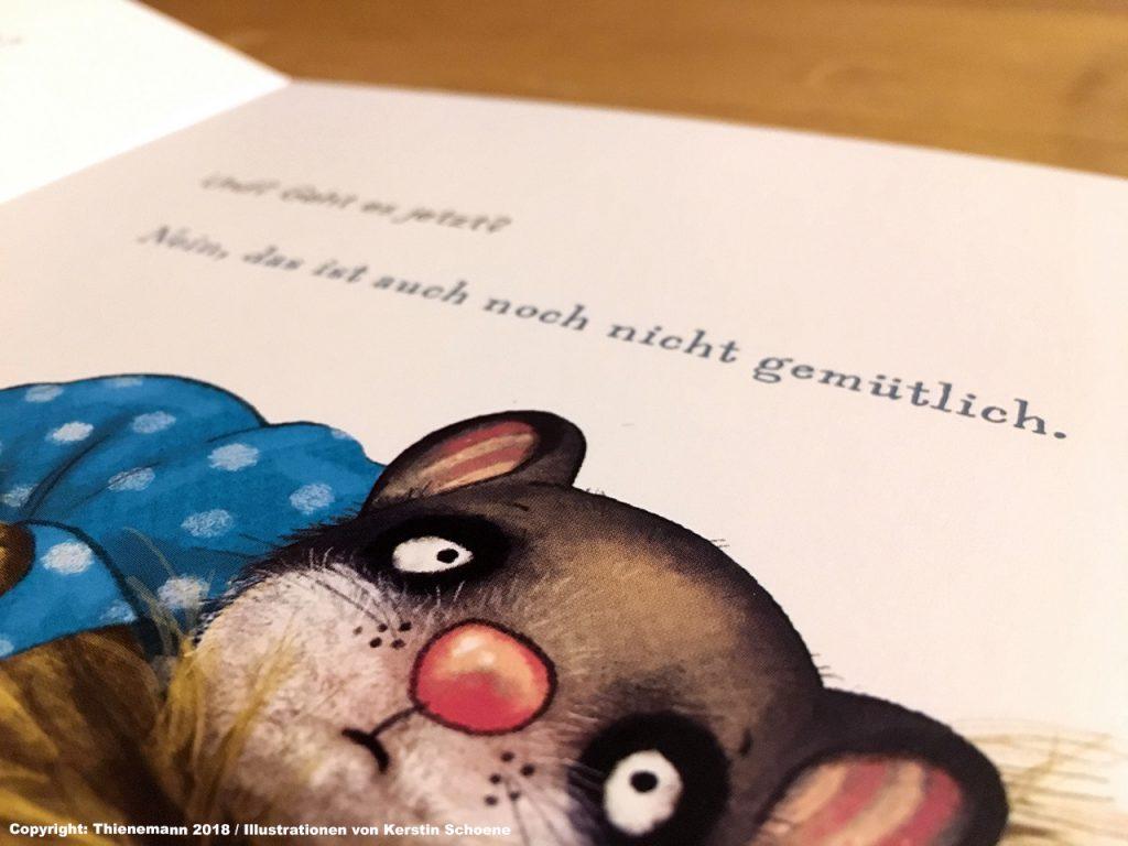 Schlafraubtiere_Familienbett_Hymne_der_kleine_Siebenschläfer_Thienemann 2018_Illustrationen von Kerstin Schoene2