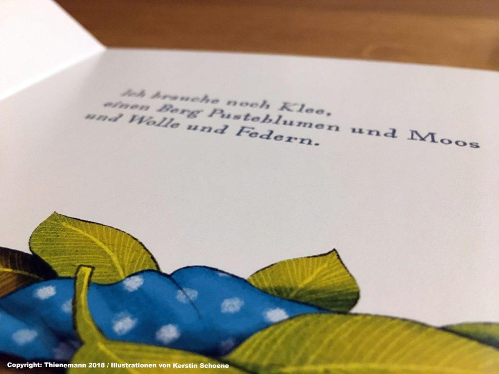 Schlafraubtiere_Familienbett_Hymne_der_kleine_Siebenschläfer_Thienemann 2018_Illustrationen von Kerstin Schoene4