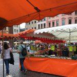 Schlafraubtiere_Mainz_Rhein_Mainzigartig_Wochenende_Familie29
