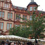 Schlafraubtiere_Mainz_Rhein_Mainzigartig_Wochenende_Familie31