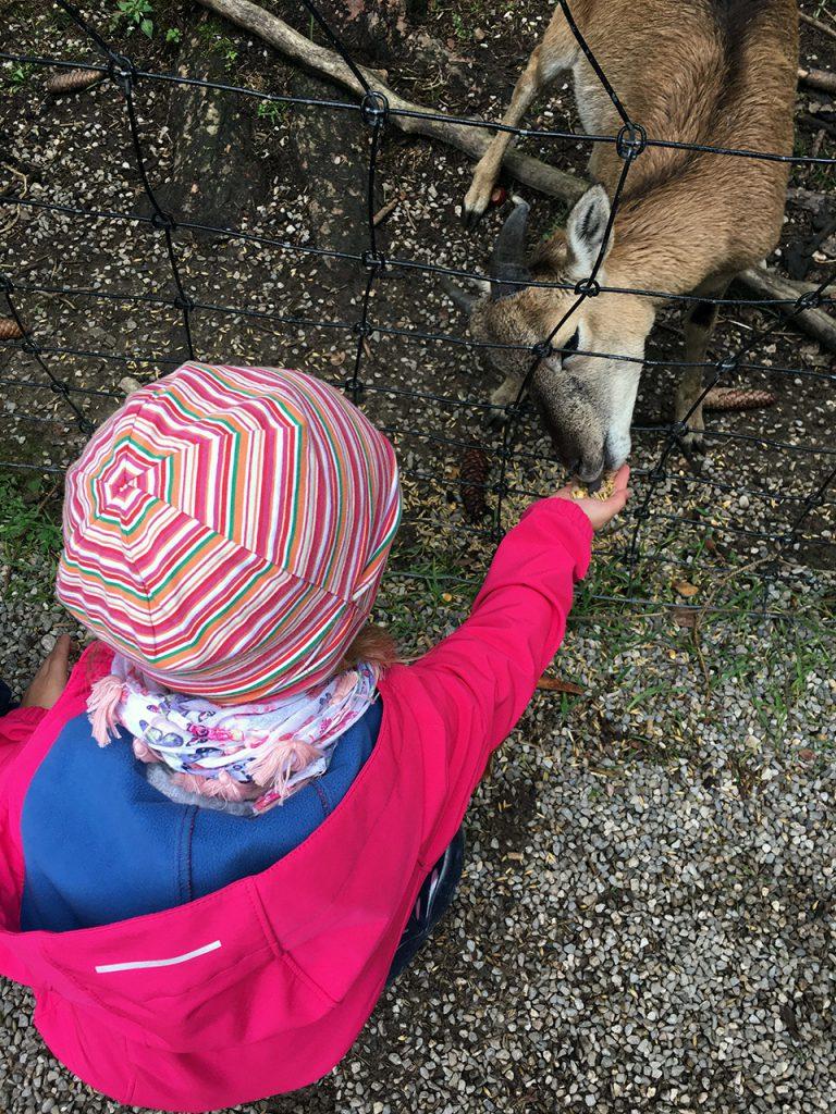 Schlafraubtiere_Wildpark_Poing_Unterwegs_mit_Kindern_Ausflug_München2